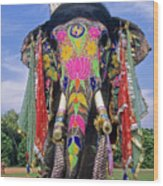 Decorated Indian Elephant Wood Print