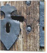 Decorative Door Fittings Wood Print