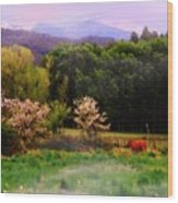 Deep Breath Of Spring El Valle New Mexico Wood Print
