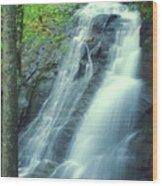 Deep Creek Falls Smoky Mountains Wood Print
