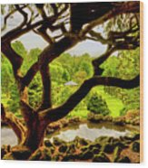Deep Cuts Gazebo Between The Tree Branches Wood Print