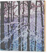 Deep Freeze Wood Print