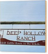 Deep Hollow Ranch Wood Print