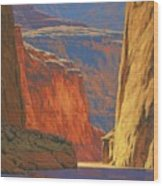 Deep In The Canyon Wood Print