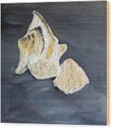 Deep Ocean Seashells Wood Print by Leslye Miller
