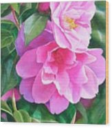 Deep Pink Camellias Wood Print by Sharon Freeman