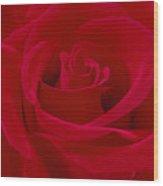 Deep Red Rose Wood Print