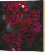 Deep Scarlet Glabra Wood Print