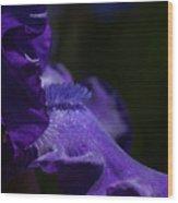 Deep Sparkling Iris Wood Print