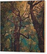 Deep Trees Wood Print