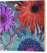 Deep Water Daisy Dance Wood Print