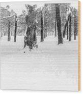 Deep Winter II Wood Print