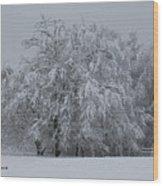 Deep Winter Wood Print