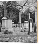 Deep Within Evergreen Cemetery Wood Print