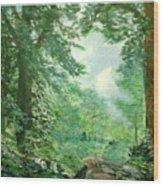 Deep Woods Path Wood Print