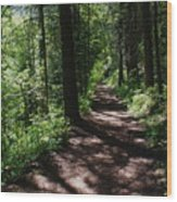 Deep Woods Road Wood Print