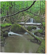 Deep Woods Stream 2 Wood Print