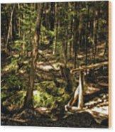 Deep Woods Trail Wood Print