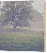 Deer By Barn On A Foggy Morning Wood Print