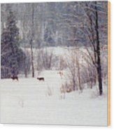 Deer By The Forest Db Wood Print