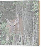 Deer By The Tree Line Wood Print
