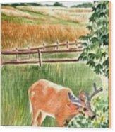 Deer Eating Leaves Wood Print