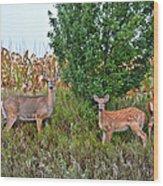 Deer Family Wood Print