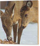Deer Friends Wood Print