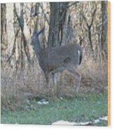 Deer Going Wood Print