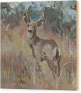 Deer In A Field Wood Print