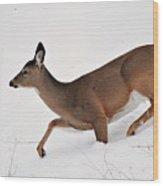 Deer In Deep Snow Wood Print