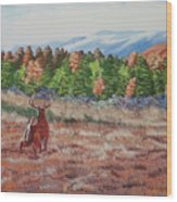 Deer In Fall Wood Print
