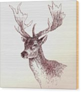 Deer In Ink Wood Print