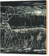 Deer In Moonlight Wood Print