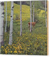 Deer In Spring Wood Print
