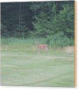 Deer In The Midst Wood Print