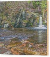 Deer Leap Falls  Wood Print