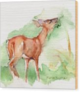 Deer Painting In Watercolor Wood Print