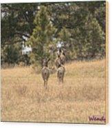Deer Tails Wood Print