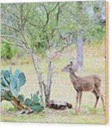 Deer19 Wood Print