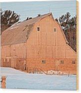 Defunct Winter Wood Print