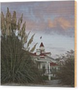 Del Coronado Brushes Wood Print