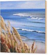 Del Playa Wood Print