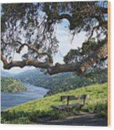 Del Valle Reservoir Wood Print