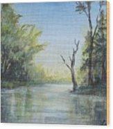 Delaware River  Wood Print