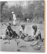 Delhi: Snake Charmers Wood Print