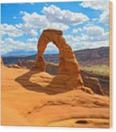 Delicate Arch Wood Print