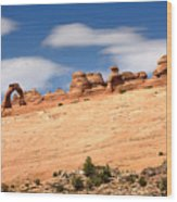 Delicate Arch Famous Landmark In Arches National Park Utah Wood Print