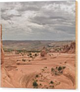 Delicate Arch Panoramic Wood Print