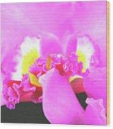 Delicate In Pink Wood Print